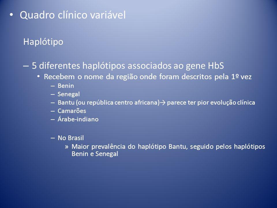 Quadro clínico variável Haplótipo – 5 diferentes haplótipos associados ao gene HbS Recebem o nome da região onde foram descritos pela 1º vez – Benin –