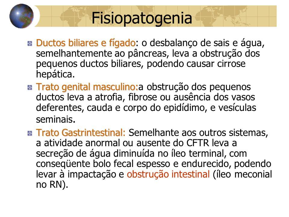 Fisiopatogenia Ductos biliares e fígado Ductos biliares e fígado: o desbalanço de sais e água, semelhantemente ao pâncreas, leva a obstrução dos pequenos ductos biliares, podendo causar cirrose hepática.