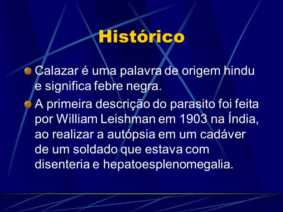 Histórico Calazar é uma palavra de origem hindu e significa febre negra. A primeira descrição do parasito foi feita por William Leishman em 1903 na Ín