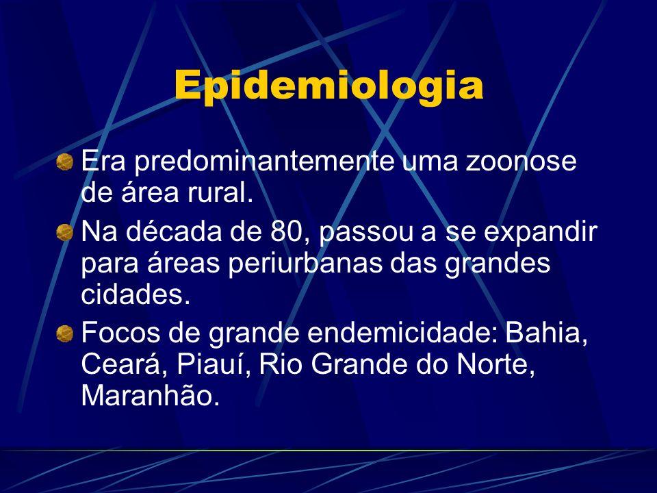 Epidemiologia Era predominantemente uma zoonose de área rural. Na década de 80, passou a se expandir para áreas periurbanas das grandes cidades. Focos