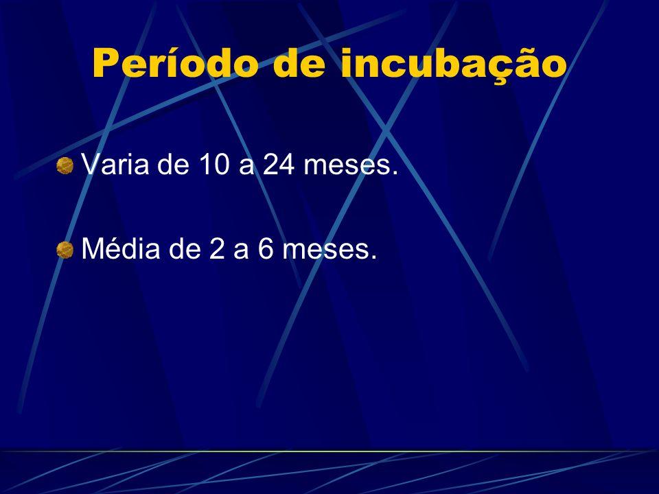 Período de incubação Varia de 10 a 24 meses. Média de 2 a 6 meses.