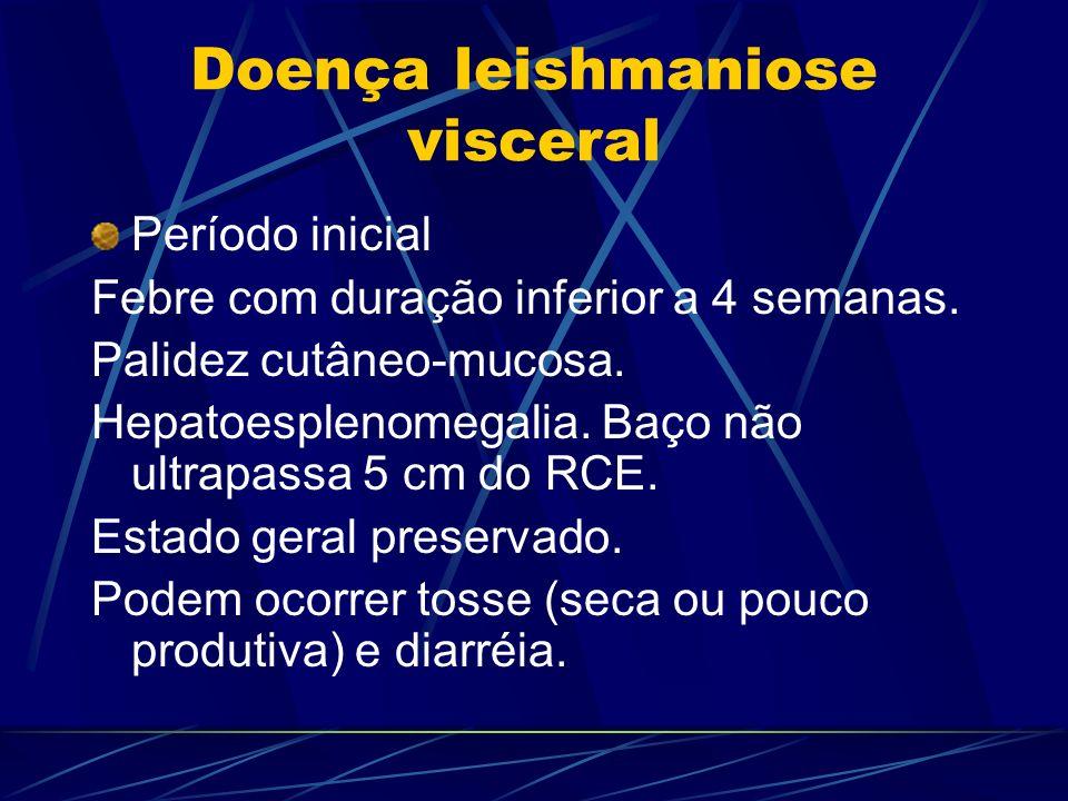 Doença leishmaniose visceral Período inicial Febre com duração inferior a 4 semanas. Palidez cutâneo-mucosa. Hepatoesplenomegalia. Baço não ultrapassa