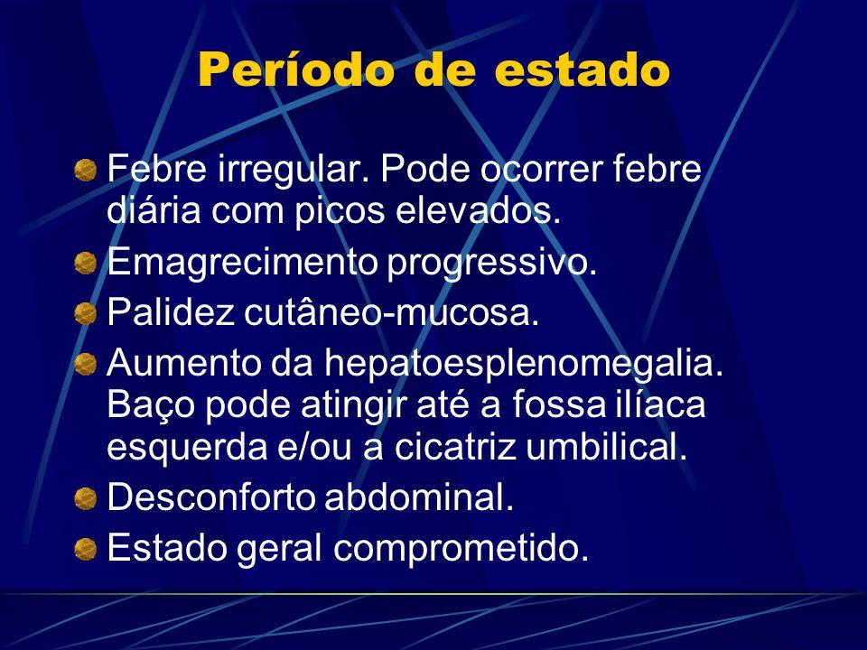 Período de estado Febre irregular. Pode ocorrer febre diária com picos elevados. Emagrecimento progressivo. Palidez cutâneo-mucosa. Aumento da hepatoe