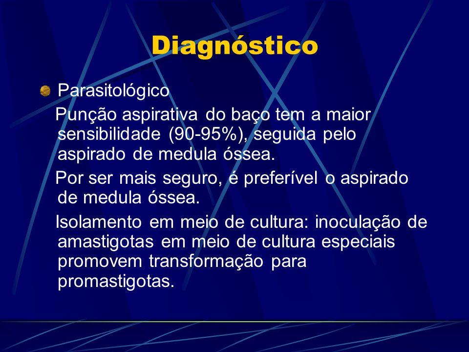 Diagnóstico Parasitológico Punção aspirativa do baço tem a maior sensibilidade (90-95%), seguida pelo aspirado de medula óssea. Por ser mais seguro, é
