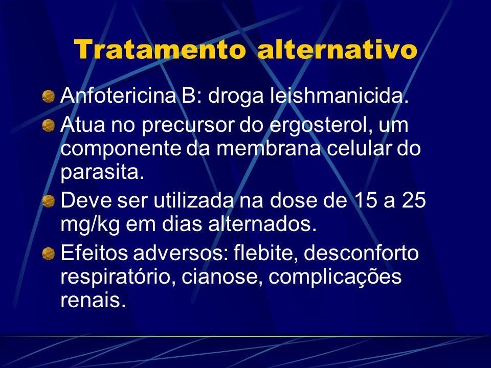 Tratamento alternativo Anfotericina B: droga leishmanicida. Atua no precursor do ergosterol, um componente da membrana celular do parasita. Deve ser u