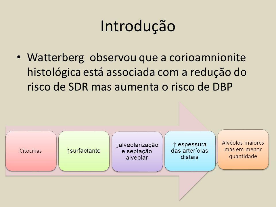 Introdução Watterberg observou que a corioamnionite histológica está associada com a redução do risco de SDR mas aumenta o risco de DBP Citocinas surf