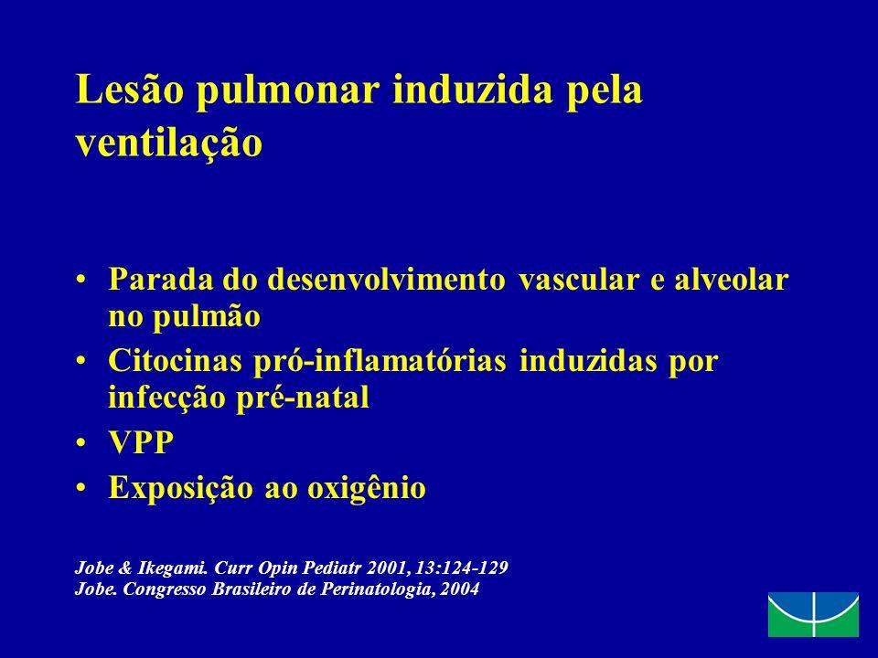 Lesão pulmonar induzida pela ventilação Parada do desenvolvimento vascular e alveolar no pulmão Citocinas pró-inflamatórias induzidas por infecção pré