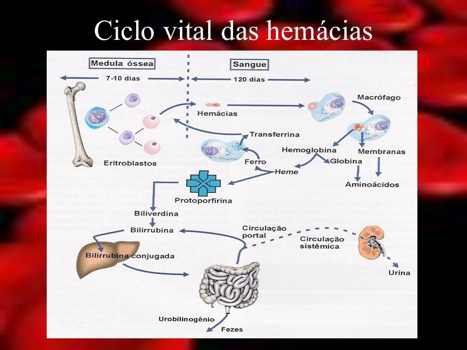 Definição Síndrome clínica e quadro laboratorial caracterizado por: – Hematócrito – Hemoglobina – Hemácias/ volume de sangue.