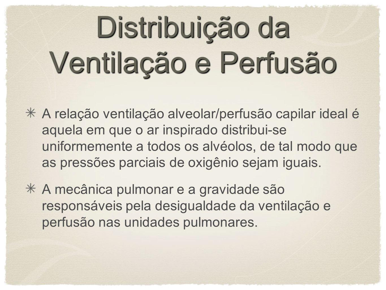 Distribuição da Ventilação e Perfusão A relação ventilação alveolar/perfusão capilar ideal é aquela em que o ar inspirado distribui-se uniformemente a todos os alvéolos, de tal modo que as pressões parciais de oxigênio sejam iguais.