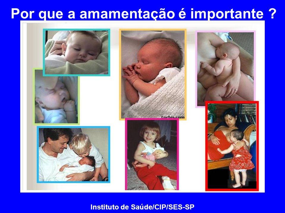 Por que a amamentação é importante ? Instituto de Saúde/CIP/SES-SP