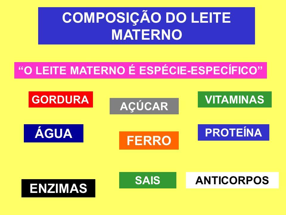 COMPOSIÇÃO DO LEITE MATERNO O LEITE MATERNO É ESPÉCIE-ESPECÍFICO GORDURA PROTEÍNA AÇÚCAR FERRO ÁGUA VITAMINAS ANTICORPOSSAIS ENZIMAS