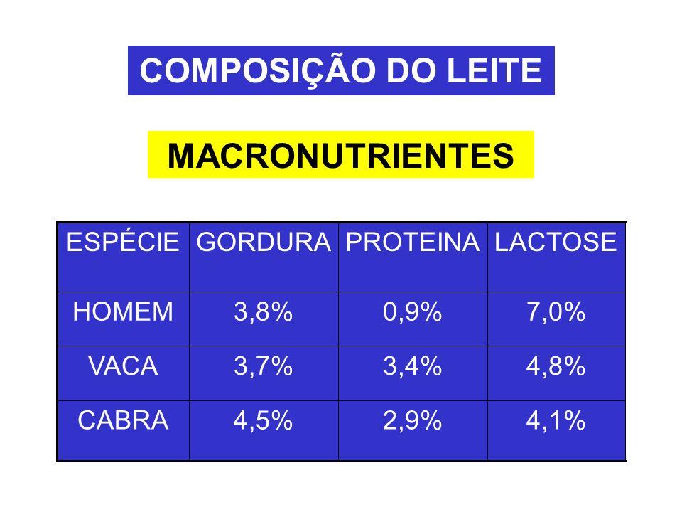 MACRONUTRIENTES COMPOSIÇÃO DO LEITE 4,1%2,9%4,5%CABRA 4,8%3,4%3,7%VACA 7,0%0,9%3,8%HOMEM LACTOSEPROTEINAGORDURAESPÉCIE