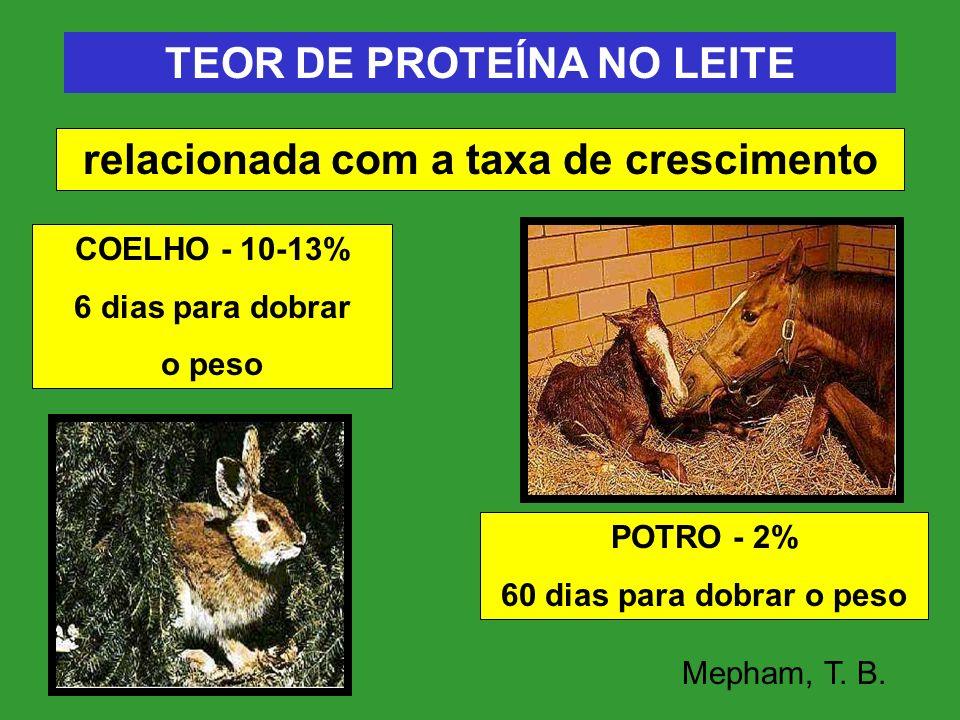 TEOR DE PROTEÍNA NO LEITE relacionada com a taxa de crescimento POTRO - 2% 60 dias para dobrar o peso COELHO - 10-13% 6 dias para dobrar o peso Mepham