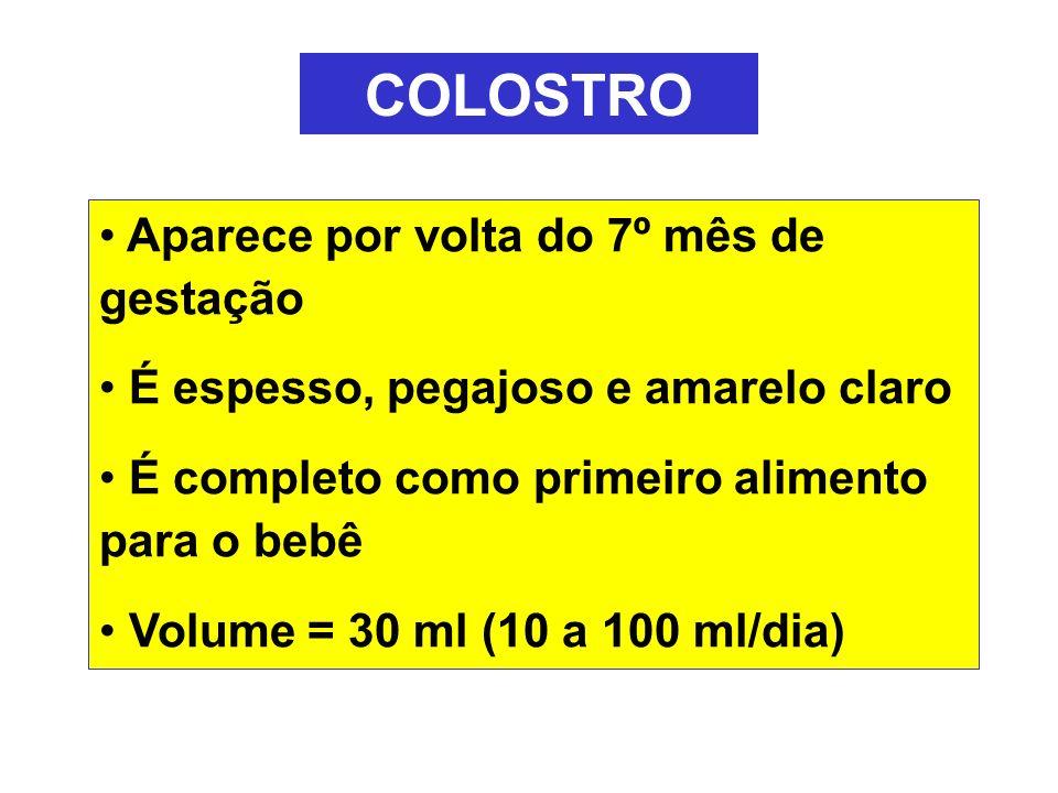 COLOSTRO Aparece por volta do 7º mês de gestação É espesso, pegajoso e amarelo claro É completo como primeiro alimento para o bebê Volume = 30 ml (10