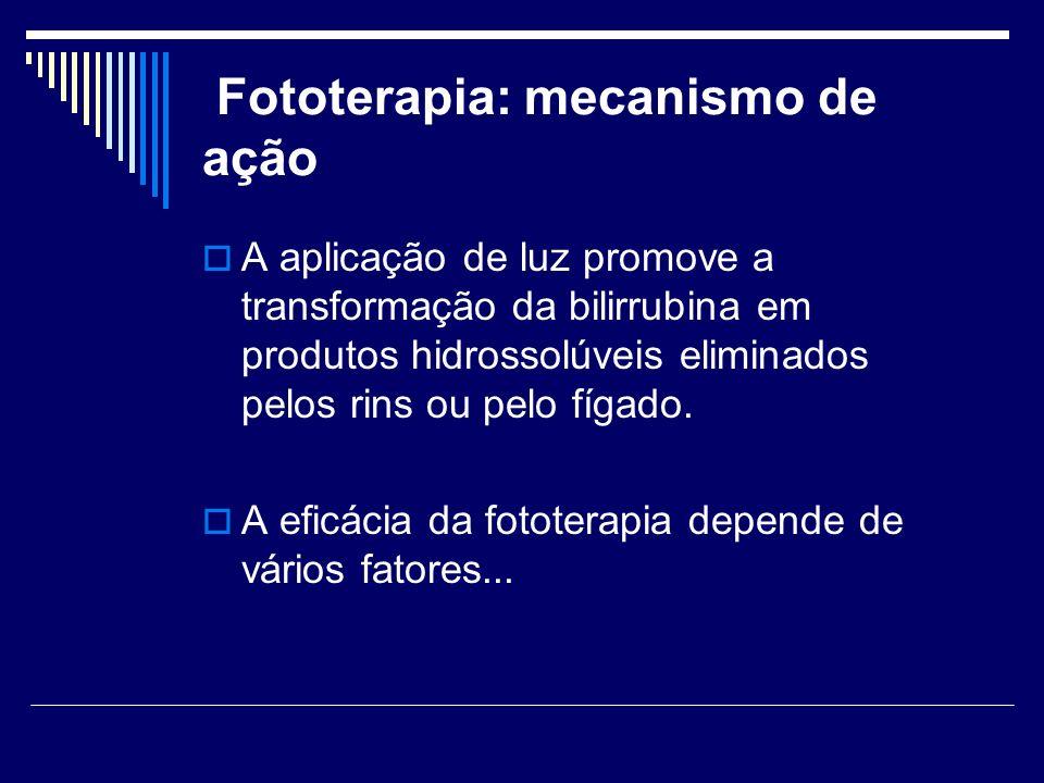 Fototerapia: mecanismo de ação A aplicação de luz promove a transformação da bilirrubina em produtos hidrossolúveis eliminados pelos rins ou pelo fíga