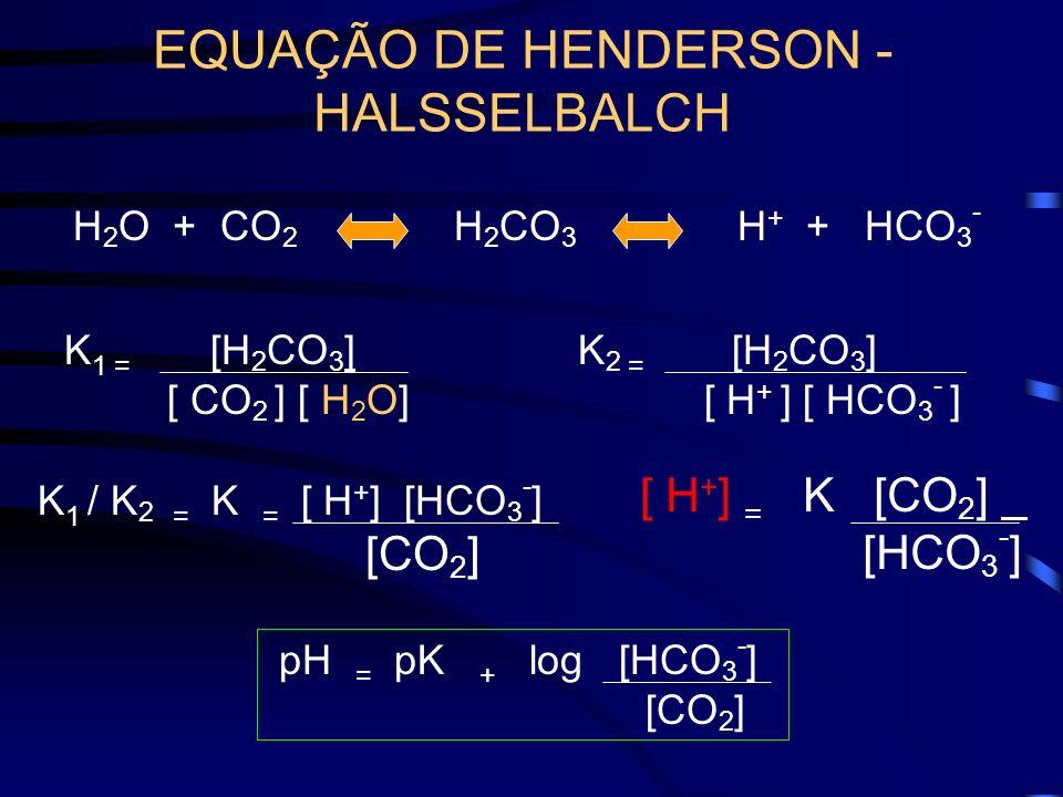 EQUAÇÃO DE HENDERSON - HALSSELBALCH H 2 CO 3 H 2 O + CO 2 H + + HCO 3 - K 1 = [H 2 CO 3 ] [ CO 2 ] [ H 2 O] K 2 = [H 2 CO 3 ] [ H + ] [ HCO 3 - ] K 1