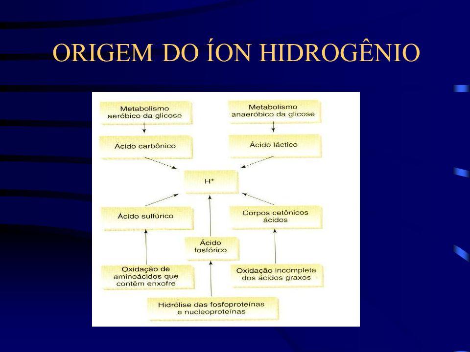 ORIGEM DO ÍON HIDROGÊNIO