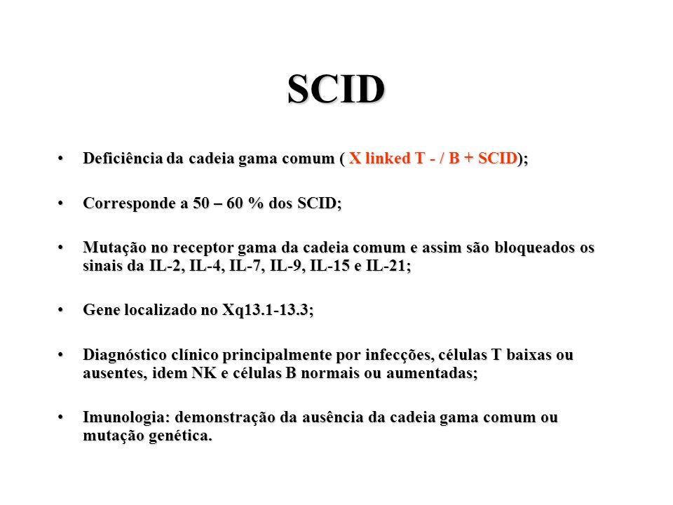 SCID Deficiência da cadeia gama comum ( X linked T - / B + SCID);Deficiência da cadeia gama comum ( X linked T - / B + SCID); Corresponde a 50 – 60 %