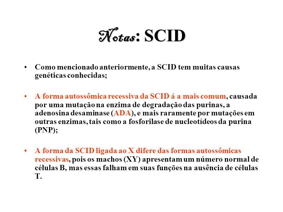 Notas : SCID Como mencionado anteriormente, a SCID tem muitas causas genéticas conhecidas; A forma autossômica recessiva da SCID á a mais comum, causa