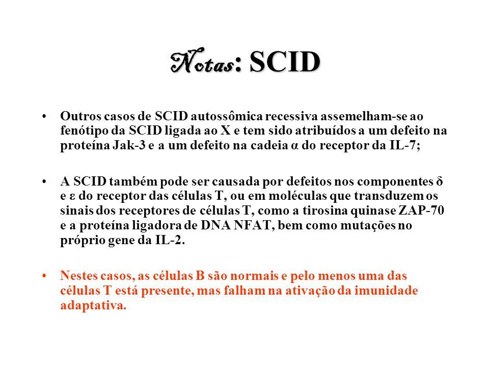 Notas : SCID Outros casos de SCID autossômica recessiva assemelham-se ao fenótipo da SCID ligada ao X e tem sido atribuídos a um defeito na proteína J