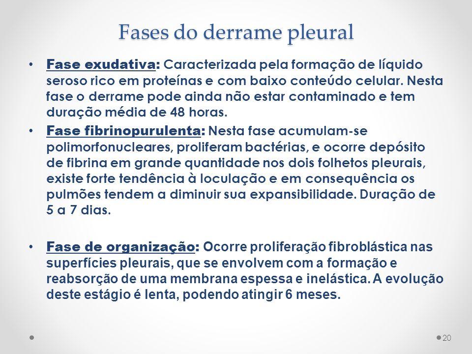 Fases do derrame pleural Fase exudativa: Caracterizada pela formação de líquido seroso rico em proteínas e com baixo conteúdo celular. Nesta fase o de
