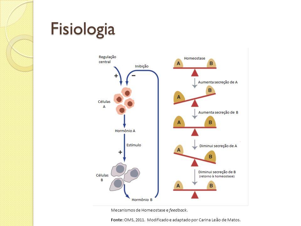 Fisiologia Mecanismos de Homeostase e feedback. Fonte: OMS, 2011. Modificado e adaptado por Carina Leão de Matos.