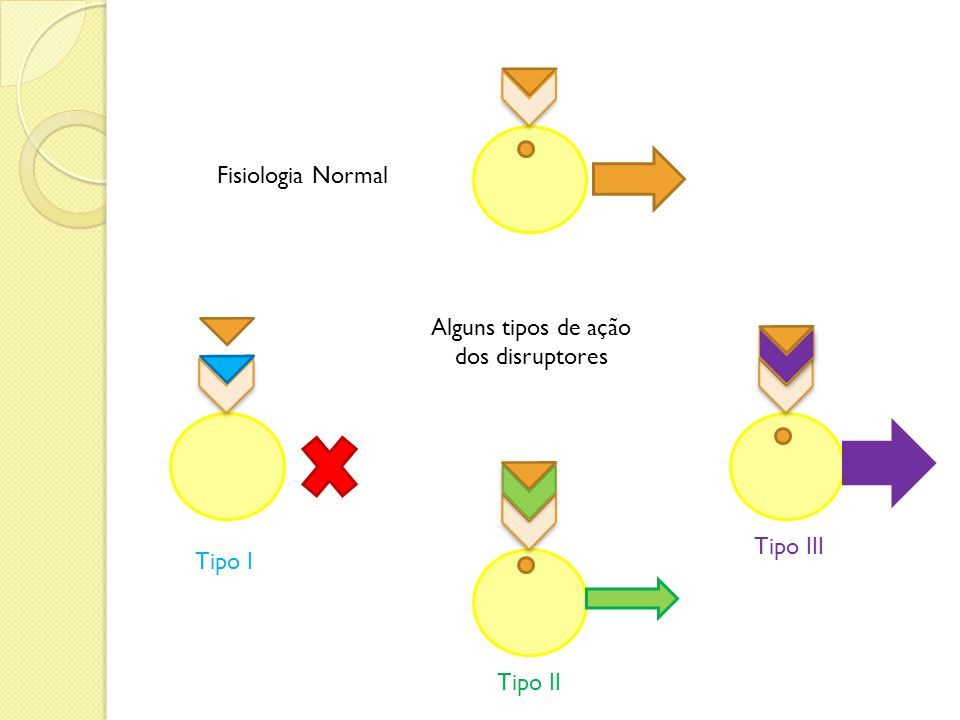 Fisiologia Normal Alguns tipos de ação dos disruptores Tipo I Tipo II Tipo III