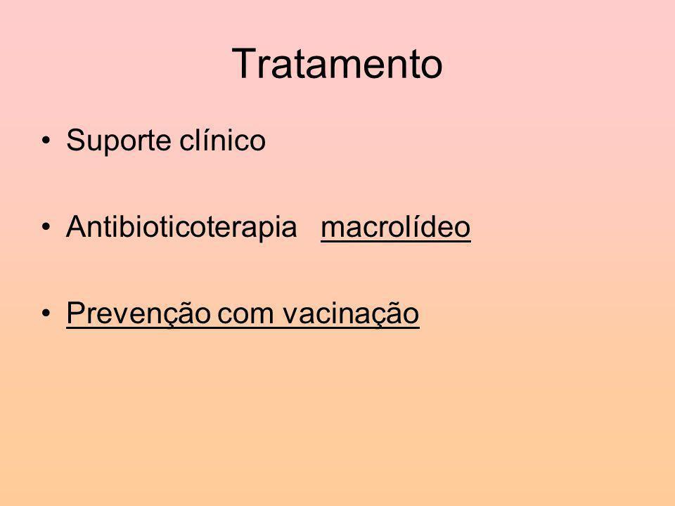 Tratamento Suporte clínico Antibioticoterapia macrolídeo Prevenção com vacinação