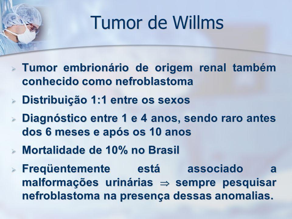 Tumor de Willms Tumor embrionário de origem renal também conhecido como nefroblastoma Tumor embrionário de origem renal também conhecido como nefrobla