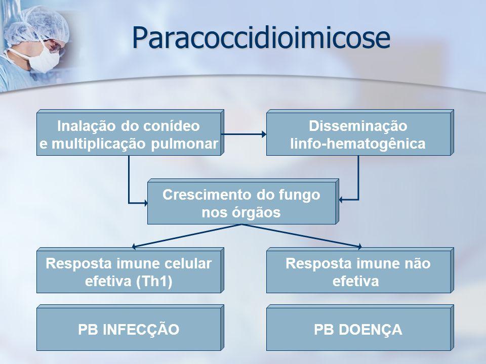 Paracoccidioimicose Inalação do conídeo e multiplicação pulmonar Disseminação linfo-hematogênica Crescimento do fungo nos órgãos Resposta imune celula