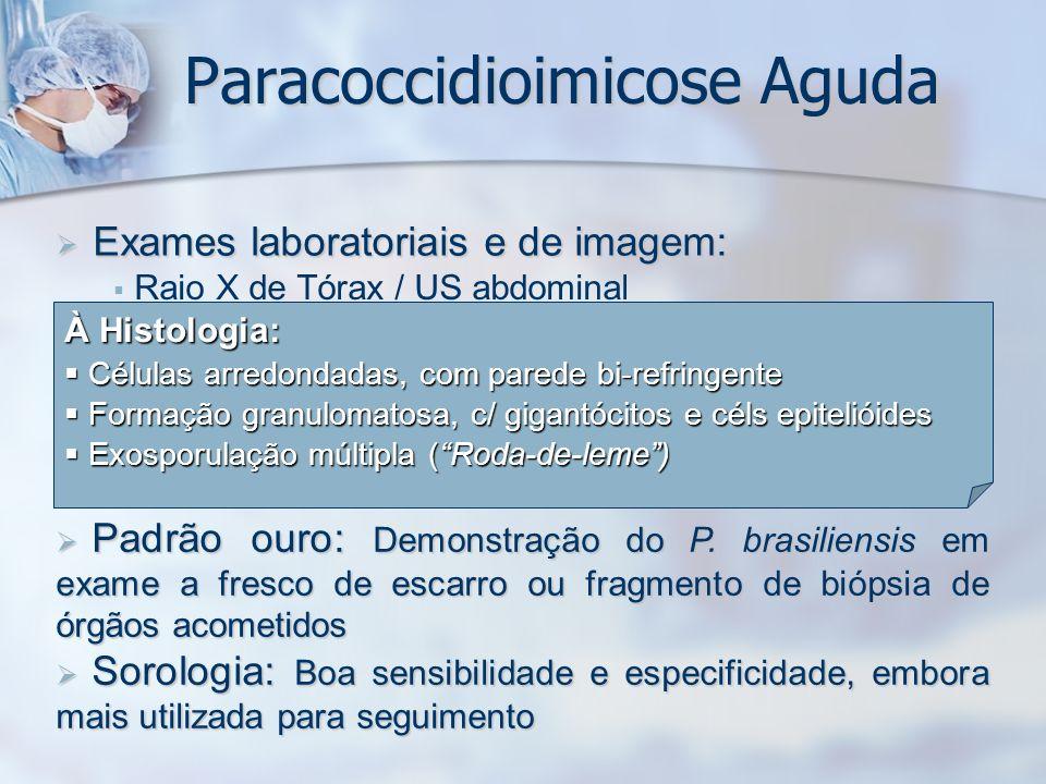 Exames laboratoriais e de imagem: Exames laboratoriais e de imagem: Raio X de Tórax / US abdominal Hemograma completo Provas bioquímicas hepáticas Ele