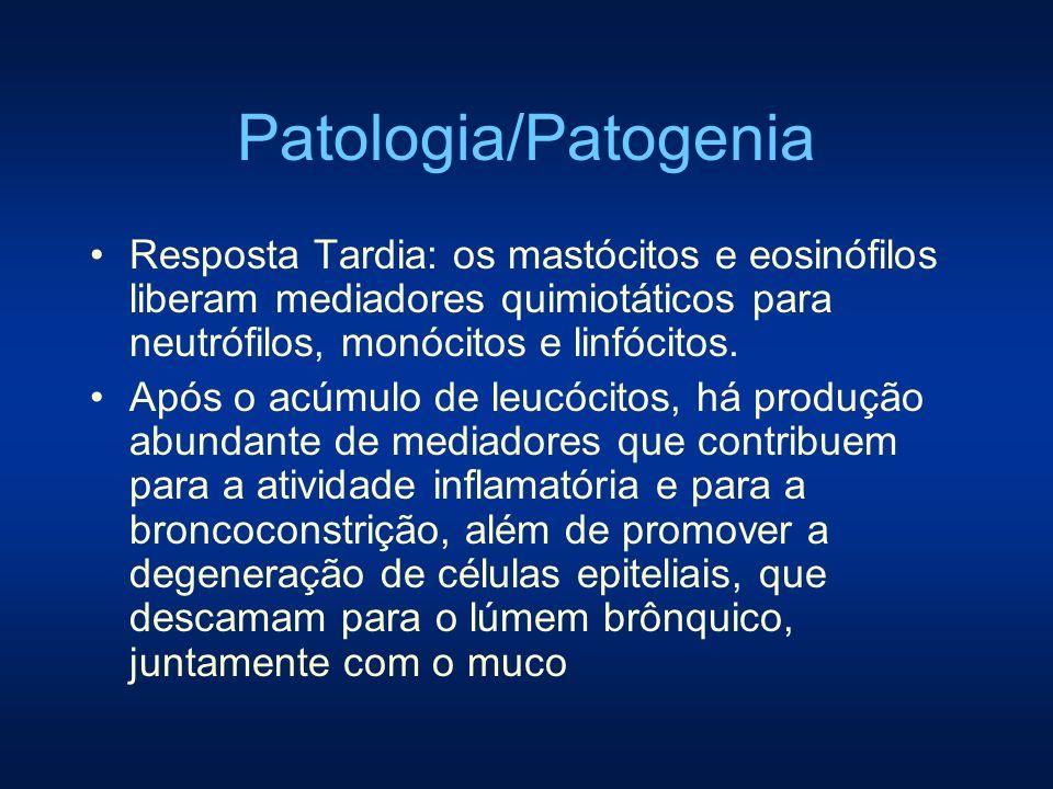 Patologia/Patogenia Resposta Tardia: os mastócitos e eosinófilos liberam mediadores quimiotáticos para neutrófilos, monócitos e linfócitos. Após o acú