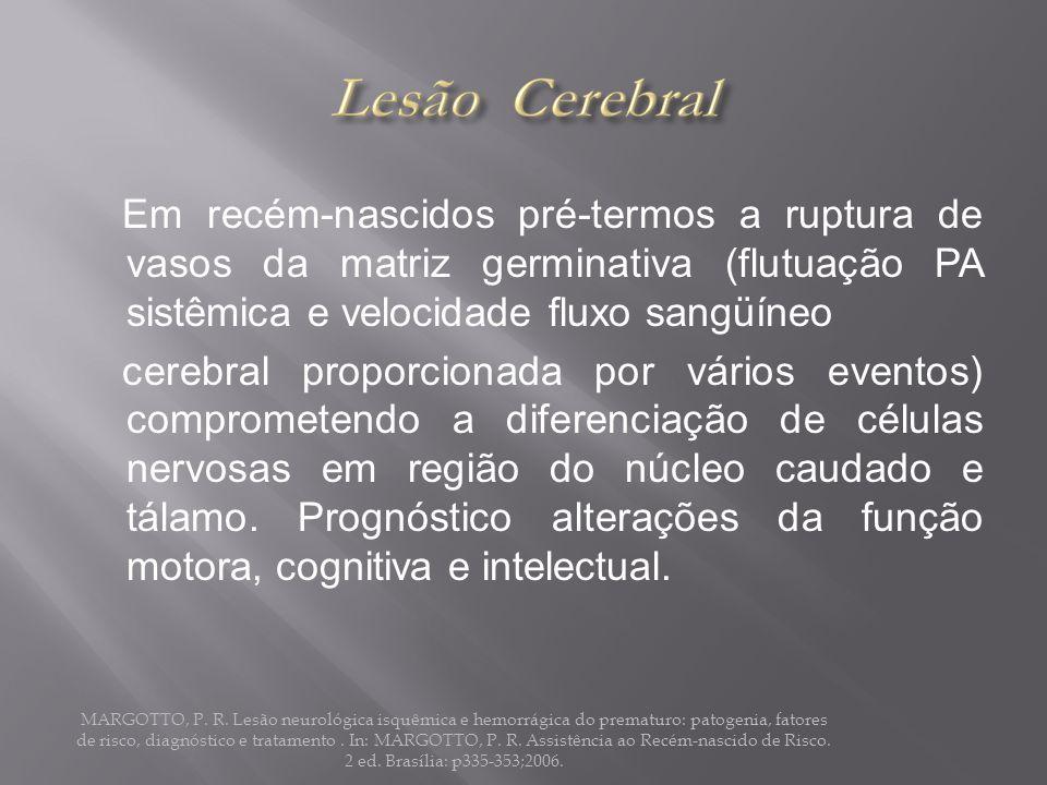 Em recém-nascidos pré-termos a ruptura de vasos da matriz germinativa (flutuação PA sistêmica e velocidade fluxo sangüíneo cerebral proporcionada por