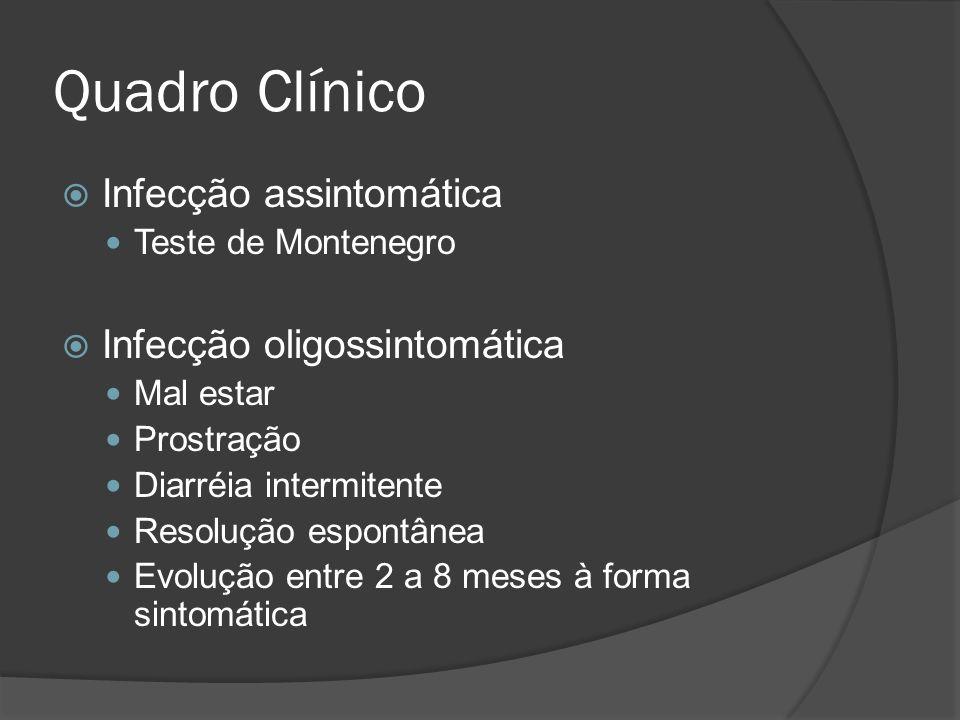 Quadro Clínico Infecção assintomática Teste de Montenegro Infecção oligossintomática Mal estar Prostração Diarréia intermitente Resolução espontânea E