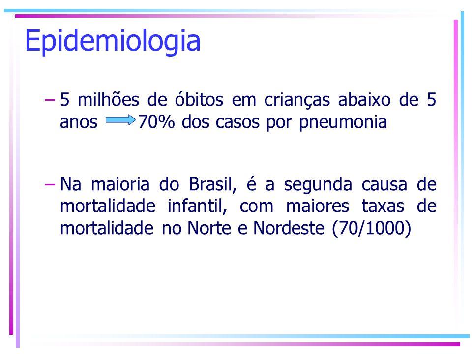 Epidemiologia –5 milhões de óbitos em crianças abaixo de 5 anos 70% dos casos por pneumonia –Na maioria do Brasil, é a segunda causa de mortalidade in