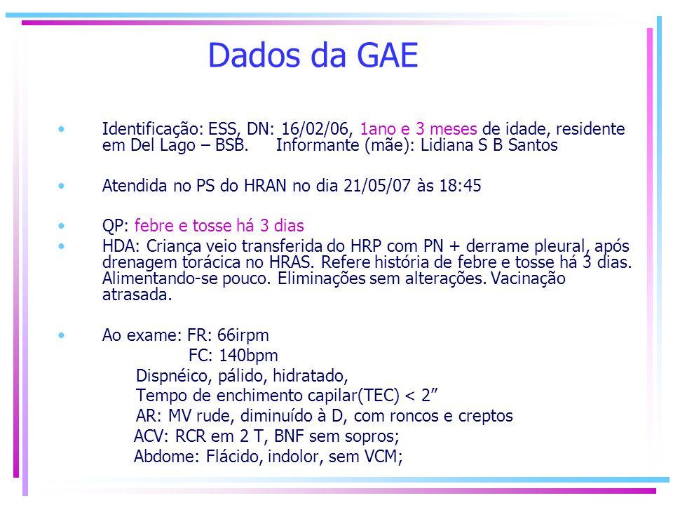 Dados da GAE Identificação: ESS, DN: 16/02/06, 1ano e 3 meses de idade, residente em Del Lago – BSB. Informante (mãe): Lidiana S B Santos Atendida no