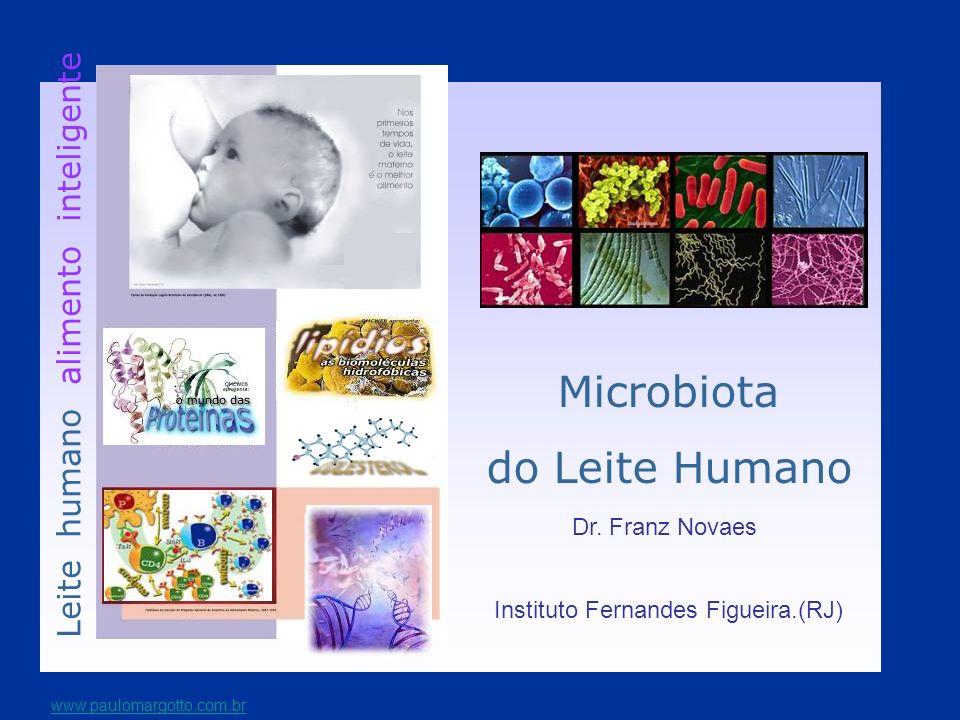 A microbiota da criança amamentada Componentes pré-bióticos estimulam a proliferação de bactérias benéficas como bifidobactérias e lactobacillus.