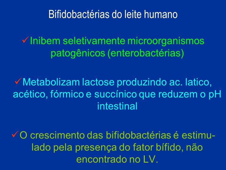 Inibem seletivamente microorganismos patogênicos (enterobactérias) Metabolizam lactose produzindo ac. latico, acético, fórmico e succínico que reduzem