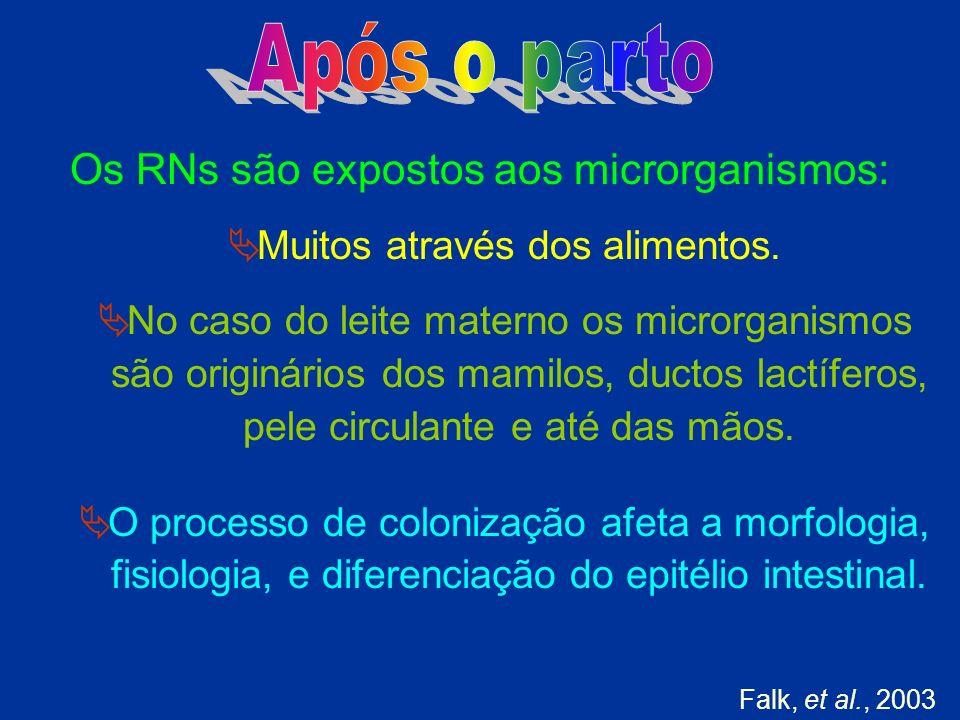 Os RNs são expostos aos microrganismos: Muitos através dos alimentos. No caso do leite materno os microrganismos são originários dos mamilos, ductos l