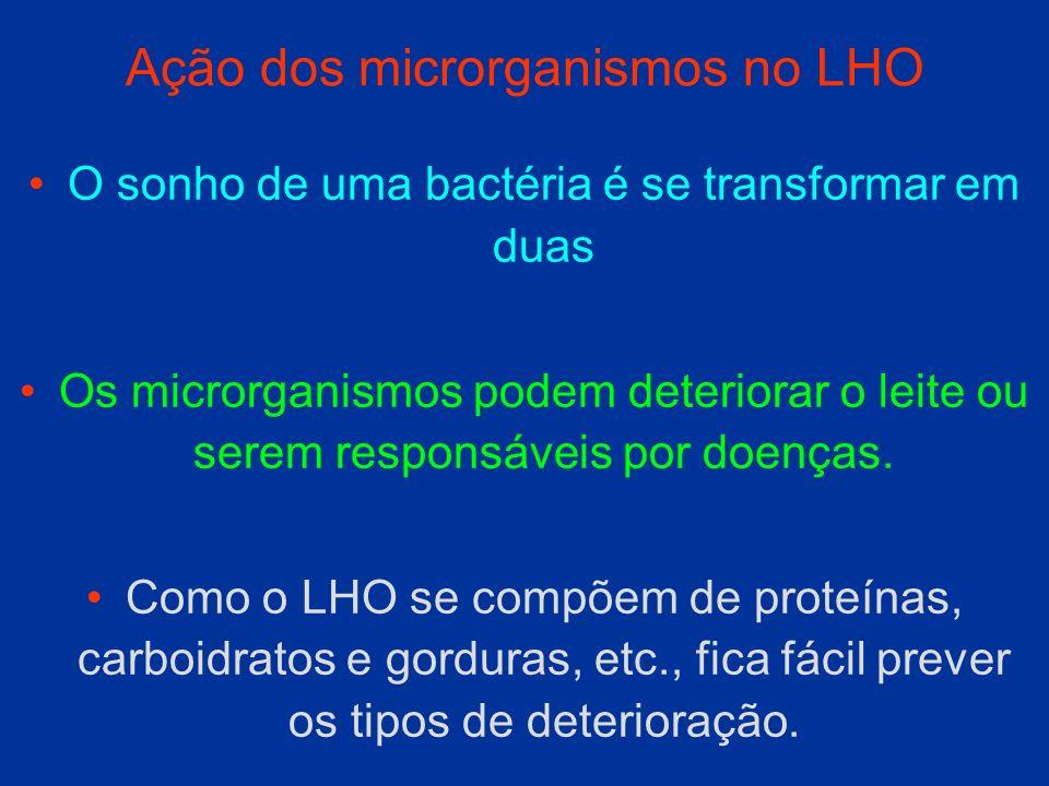 Ação dos microrganismos no LHO O sonho de uma bactéria é se transformar em duas Os microrganismos podem deteriorar o leite ou serem responsáveis por d