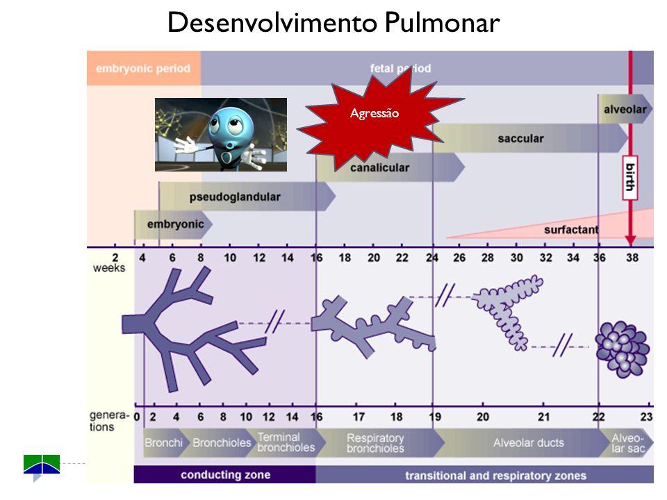 Desenvolvimento Pulmonar Agressão
