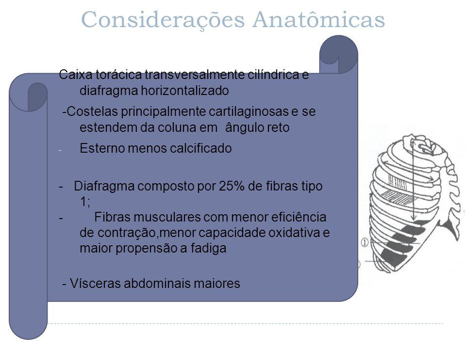 - Considerações Anatômicas Caixa torácica transversalmente cilíndrica e diafragma horizontalizado -Costelas principalmente cartilaginosas e se estende