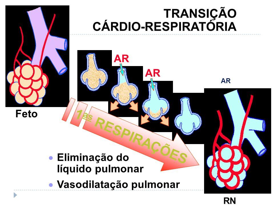 AR TRANSIÇÃO CÁRDIO-RESPIRATÓRIA 1 as RESPIRAÇÕES Eliminação do líquido pulmonar Vasodilatação pulmonar Feto RN