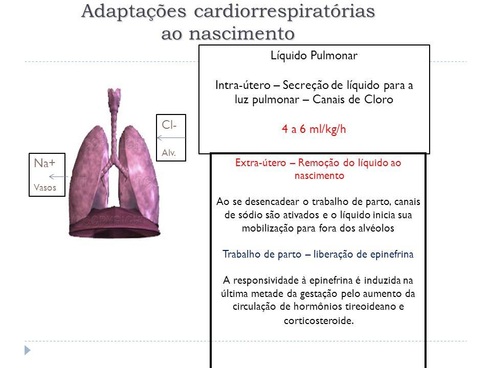Adaptações cardiorrespiratórias ao nascimento Líquido Pulmonar Intra-útero – Secreção de líquido para a luz pulmonar – Canais de Cloro 4 a 6 ml/kg/h C