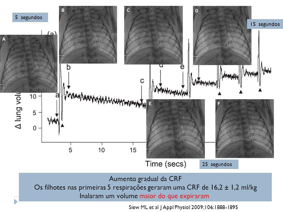 Aumento gradual da CRF Os filhotes nas primeiras 5 respirações geraram uma CRF de 16,2 ± 1,2 ml/kg Inalaram um volume maior do que expiraram Siew ML e