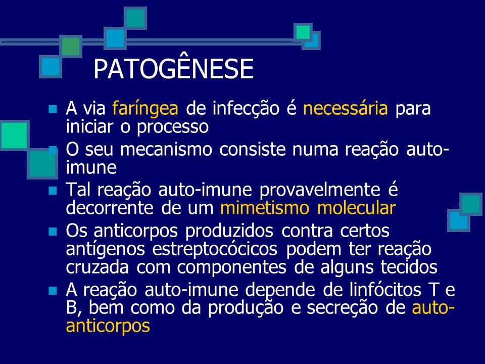 PATOGÊNESE A via faríngea de infecção é necessária para iniciar o processo O seu mecanismo consiste numa reação auto- imune Tal reação auto-imune prov