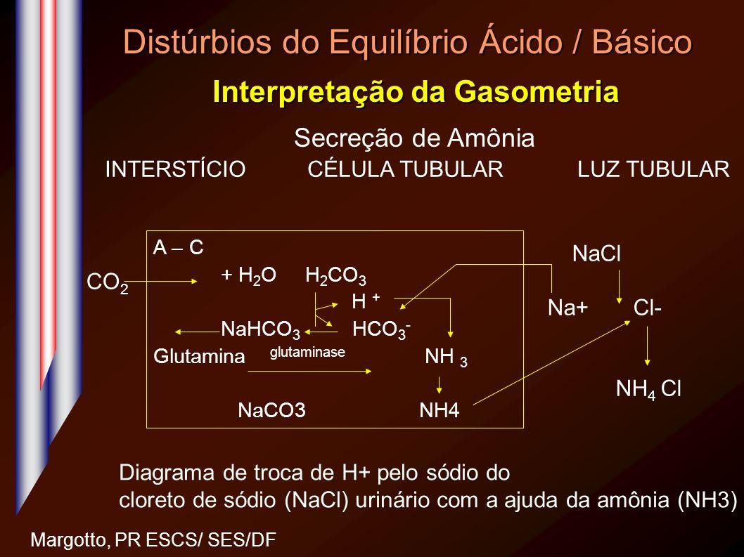 Distúrbios do Equilíbrio Ácido / Básico Interpretação da Gasometria Margotto, PR ESCS/ SES/DF Secreção de Amônia INTERSTÍCIOCÉLULA TUBULARLUZ TUBULAR