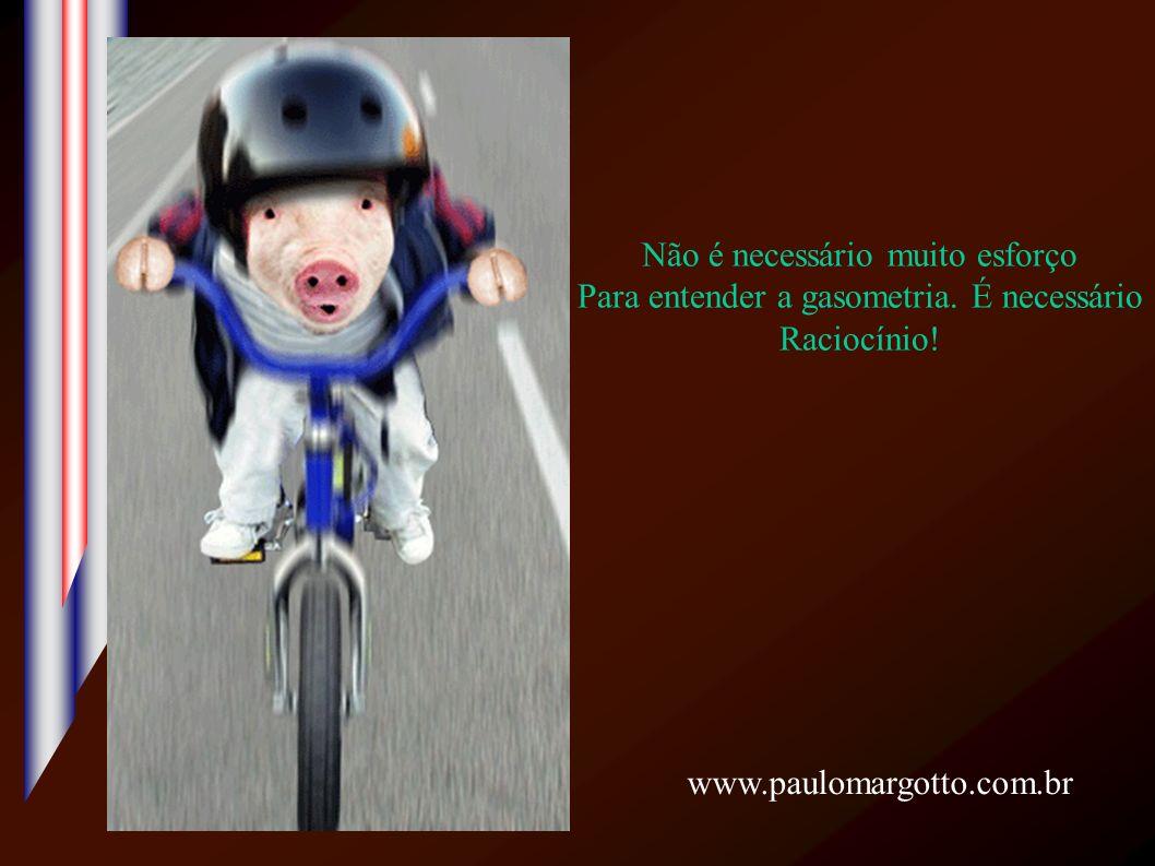 Não é necessário muito esforço Para entender a gasometria. É necessário Raciocínio! www.paulomargotto.com.br