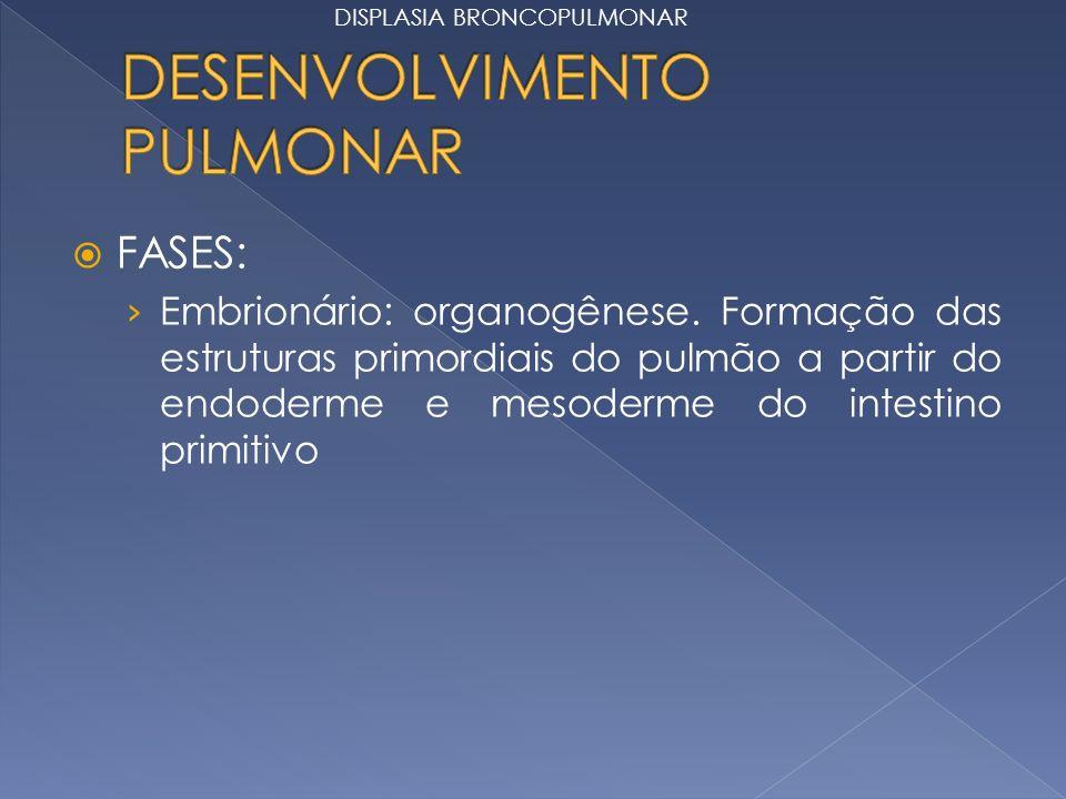 FASES: Embrionário: organogênese. Formação das estruturas primordiais do pulmão a partir do endoderme e mesoderme do intestino primitivo DISPLASIA BRO