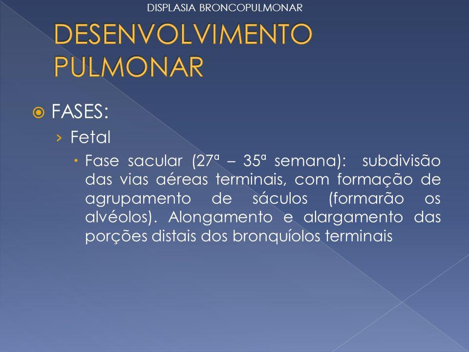 FASES: Fetal Fase sacular (27ª – 35ª semana): subdivisão das vias aéreas terminais, com formação de agrupamento de sáculos (formarão os alvéolos). Alo